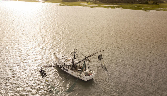 New Shrimp-Trawling Proposal Aims to Protect NC's Juvenile Fish